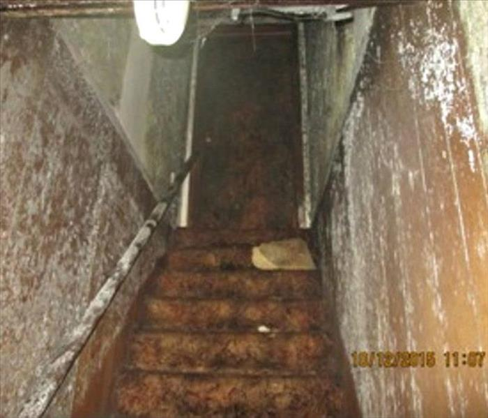 Mold Remediation in Granville, OH Before