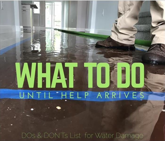 Water Damage What To Do Until Help Arrives: Water Damage