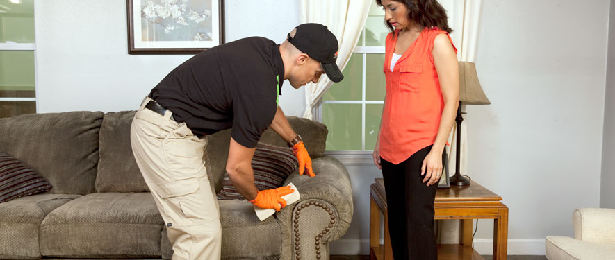 Granville, OH carpet upholstery cleaning