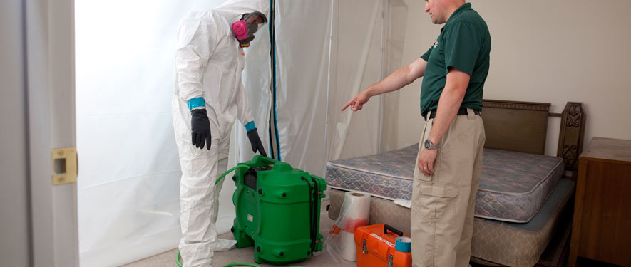 Granville, OH mold removal process